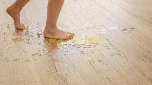 Sử dụng Sàn nhựa giả gỗ có bị nồm không?