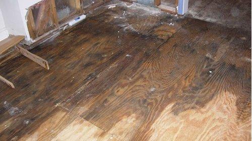Cách xử lý sàn gỗ bị ngấm nước nhanh chóng và hiệu quả