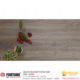 Sàn gỗ công nghiệp Fotune Aqua902 | 12m