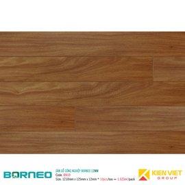 Sàn gỗ công nghiệp Borneo BN19 | 12m
