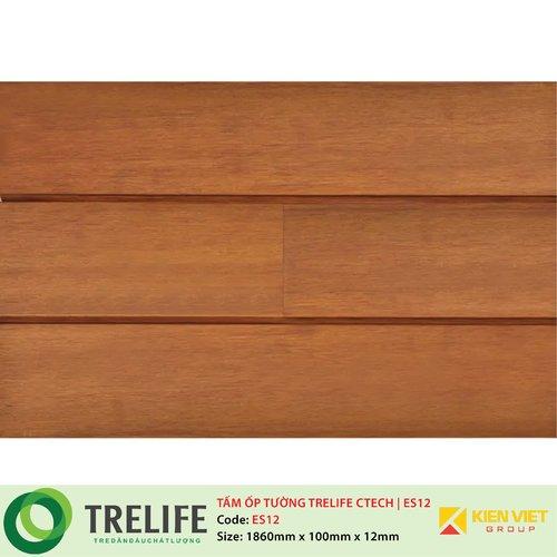 Tấm ốp tường tre ngoài trời TRELIFE CTECH| ES12