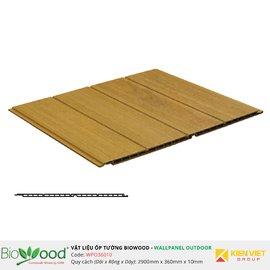 Gỗ ốp tường 360x10mm Biowood WPO36010