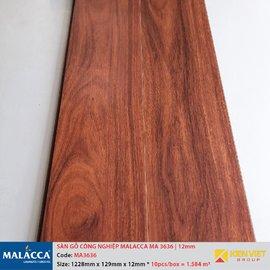 Sàn gỗ công nghiệp Malacca MA3636 | 12mm