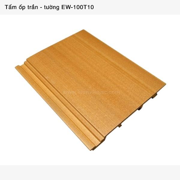 Trang trí nội thất tấm ốp trần tường | EW-100T10