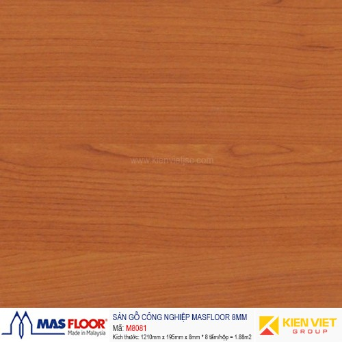 Sàn gỗ MASFLOOR M8081   8mm