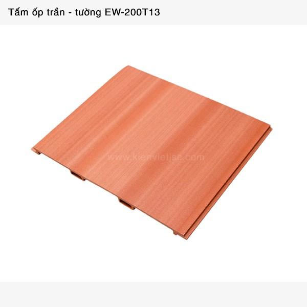 Trang trí nội thất tấm ốp trần tường | EW-200T13