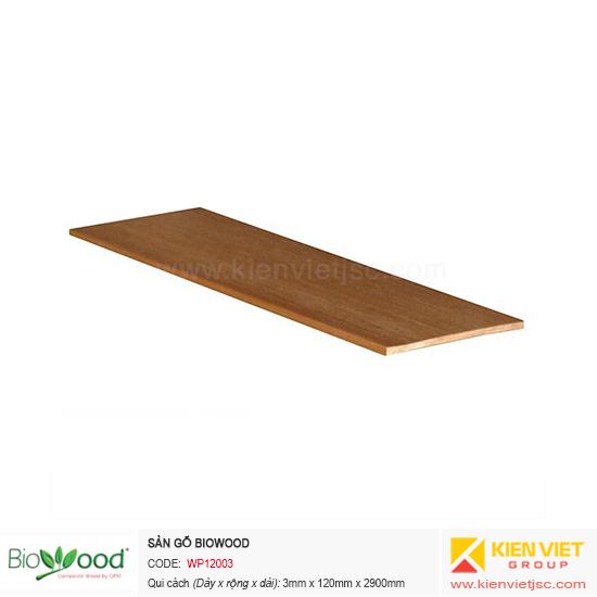 Ốp tường Biowood WP12003